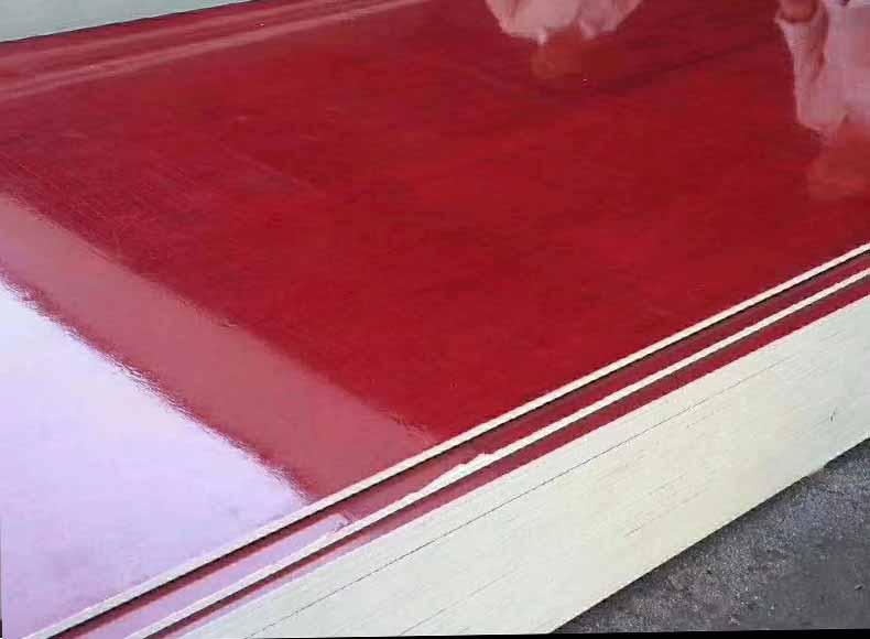 广西桉树建筑红模板
