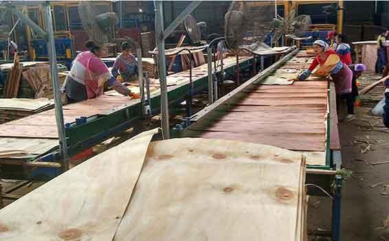 建筑模板生产线流水线